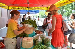 Farms and farmers markets page link